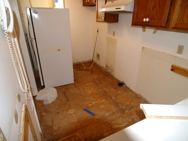 20080516_kitchen.jpg